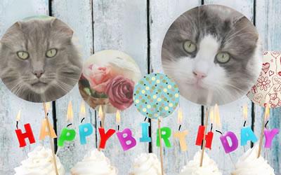 Camillo und Cimberly feiern ihren 10. Geburtstag